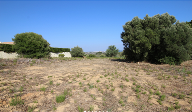 Centrally Located Large Plot of Land, Portugal