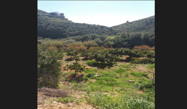 Land for agricultural activity in Malaga, Spain