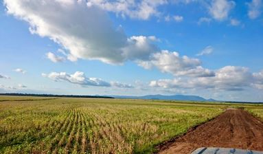 Developed Farm in Caazapa for Livestock & Agriculture - 3473 Hectares